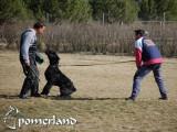 Gorgolyan de Pomerland realizando enfrentamiento y ladrido